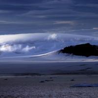 Szokatlan állatfajokat találtak az Északi-sarkon