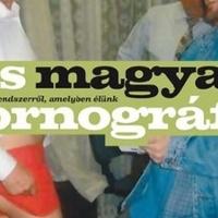 Kis nagyar pornográfia, nagy magyar politikai felháborodás