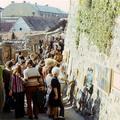 50 éves lett a Szentendrei Szabadtéri Tárlat