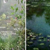 Novemberig látogatható Monet híres kertje