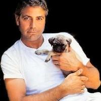 Clooney nem kellett