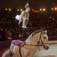 Magyar produkció nyert a cirkuszfesztiválon