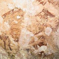 Megtalálták Délkelet-Ázsia legrégebbi sziklarajzait
