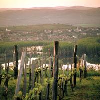 Történeti táj lesz Tokaj