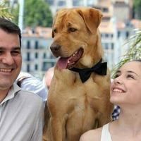 Kutyákkal versenyez az Oscarért Mundruczó