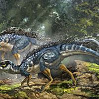 Gondban vannak a tudósok a most talált tollpihés dinó miatt
