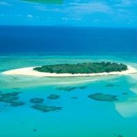 Növényvédőszerek pusztítják a Nagy Korallzátonyt