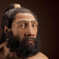 Középkori eredetűek a Neander-völgyinek hitt leletek