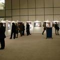 Magyar festők az Európai Parlamentben