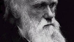 Darwin nélkül semminek nincs értelme