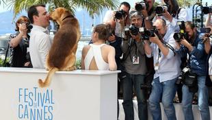 Amerikában is hódít a kutyás film