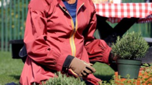 Michelle Obama kertészkedni tanítja a népet