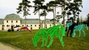 Elszabadult lovak a kastély parkjában