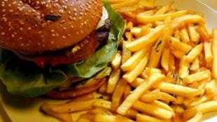 Hamburgerből és chipsből készül az új üzemanyag