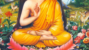 Buddha gyöngyei Magyarországon