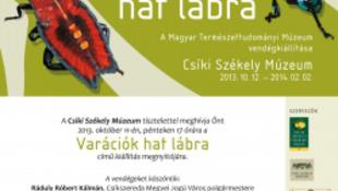 Variációk hat lábra - a Magyar Természettudományi Múzeum vándorkiállítása