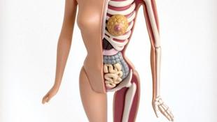 Barbie, ahogy még soha nem láttad