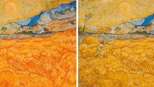 Vincent van Gogh  színvak volt