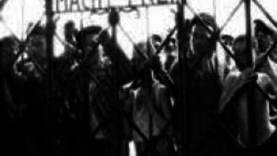 Kitüntetést kapott a holokauszt-szakértő