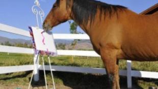 Milliókat érnek a ló által festett képek