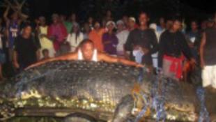 Elfogták a világ legnagyobb óriáskrokodilját