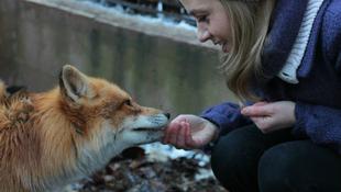 Rókát nevel a magyar színésznő
