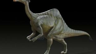 Megoldódott az óriáskarú dinoszaurusz fél évszázados rejtélye