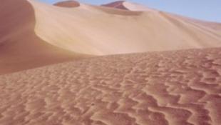 Ritka kincseket találtak a sivatagban