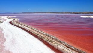 Sokkoló látvány: vérvörössé változott a tó vize