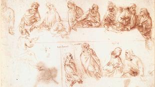 Da Vinci-rajzok a nagyközönség előtt