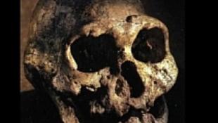 Alsónyék temetőjének sötét titkai