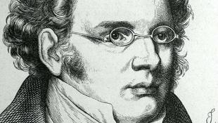 Szereti Ön Schubertet?