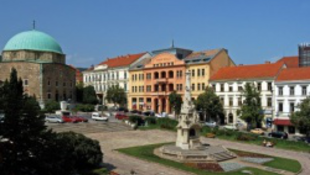 Olaszországból rendeltek növényeket Pécs főterére