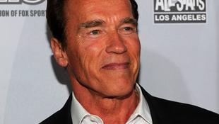 Schwarzenegger ötödször