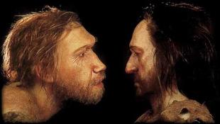Nem halt ki a neandervölgyi ember