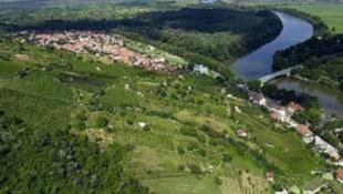 A szlovákok újra lecsapnak a Tokaji névre?