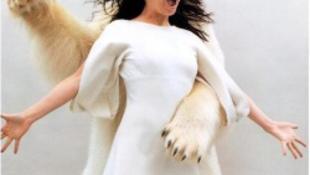 Ennio Morricone és Björk párban