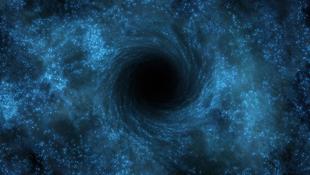 Feketelyuk-triót találtak
