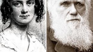 Darwin kutatta a vérfertőzést, miközben egy rokonát vette el