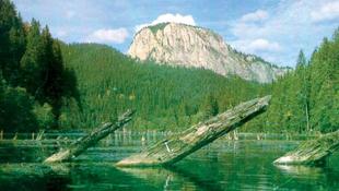 Veszélyben a Gyilkos-tó, cselekedni kell