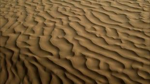 Sivataggá válik a világ