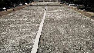 Egymillió csont a fővárosban