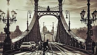 Városi Nyúl járja Budapestet