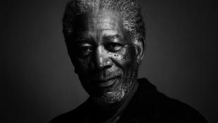 Morgan Freeman egy játékmackó ügyvédje lesz
