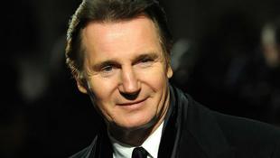 Állatvédők tüntettek Liam Neeson otthona előtt