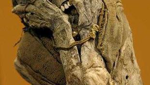 Indián múmiák rejtőztek az erőben