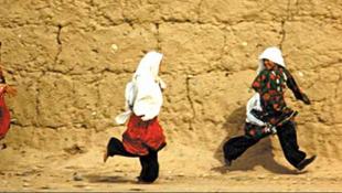 Afgán múzeum az interneten