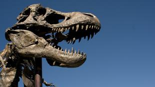 Rendőri kíséretet kapott a dinoszaurusz