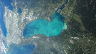 Algavirágzást kaptak lencsevégre az Ontario-tavon