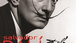 Dalí Várpalotára költözött